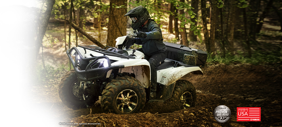 2017 Yamaha Grizzly-Eps