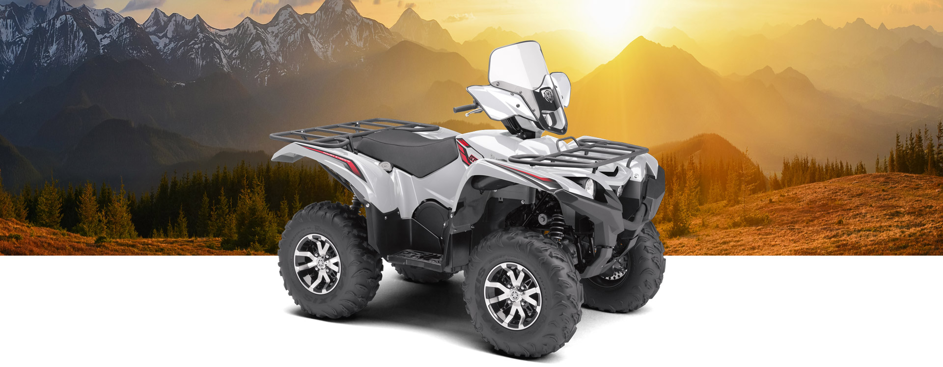 2018 Yamaha Grizzly-Eps-Le