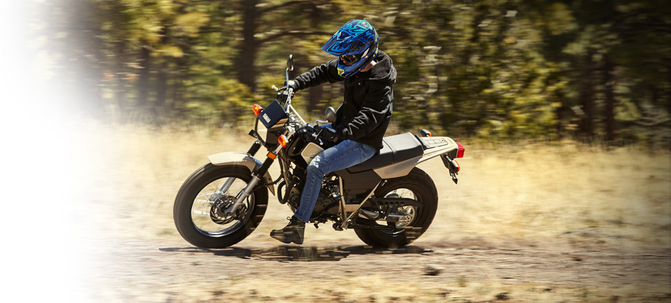 2019 Yamaha TW200 Dual Sport Motorcycle - Model Home